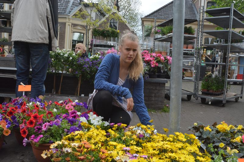 plantjes-markt-hgv (11)-1